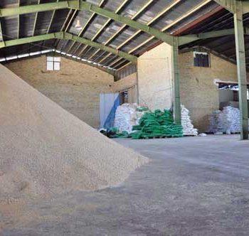 شرکت بهدان - تولید خوراک آبزیان - تولید غذا ماهی -