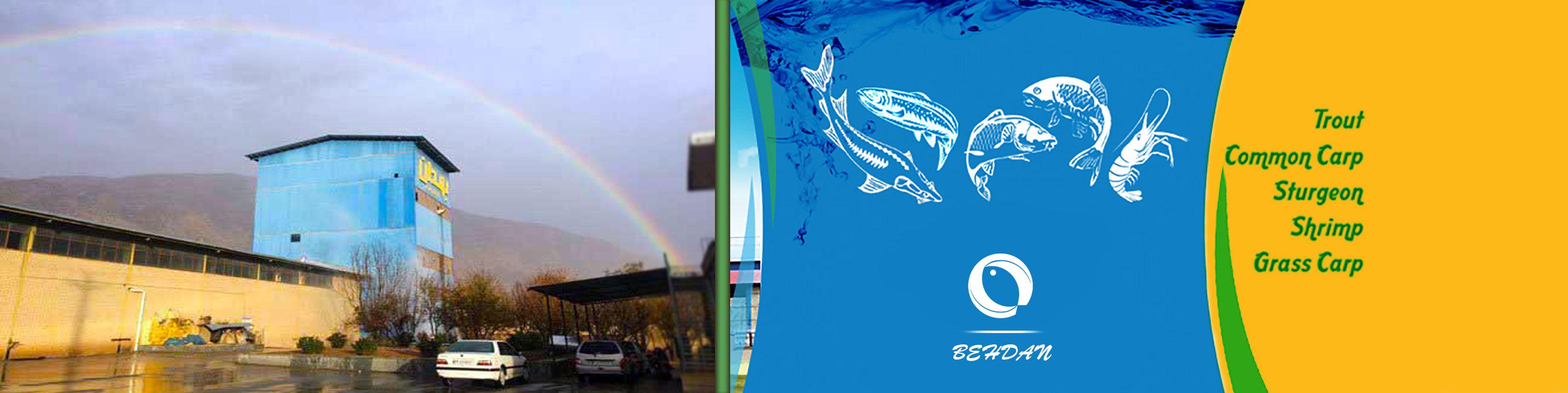 تولید غذا ماهی - خرید غذا ماهی - فروش غذا ماهی